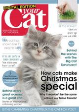 Abonnement op het blad Your Cat magazine