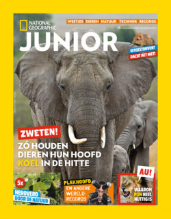 Bestelformulier National Geographic Junior