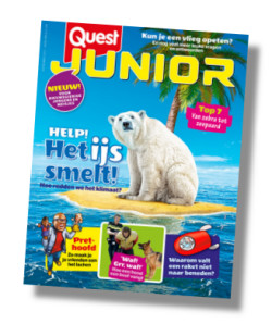 Packshot Quest Junior abonnement